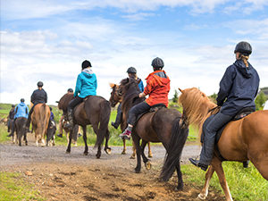 Horseback riding for equine therapy